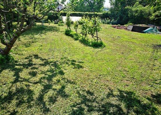 Mulčování vysoké trávy