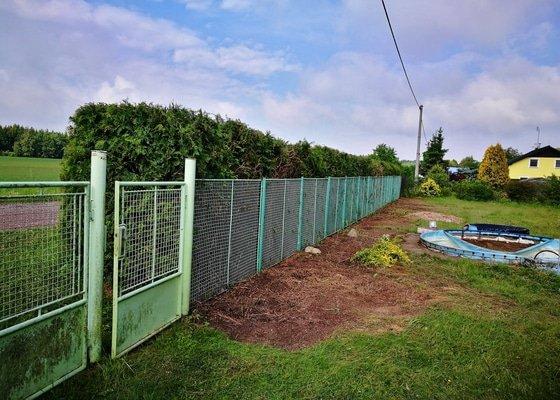Odstranění nevhodných dřevin