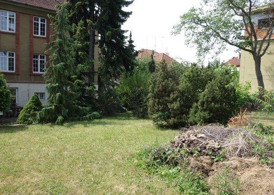 Pravidelná údržba zahrady