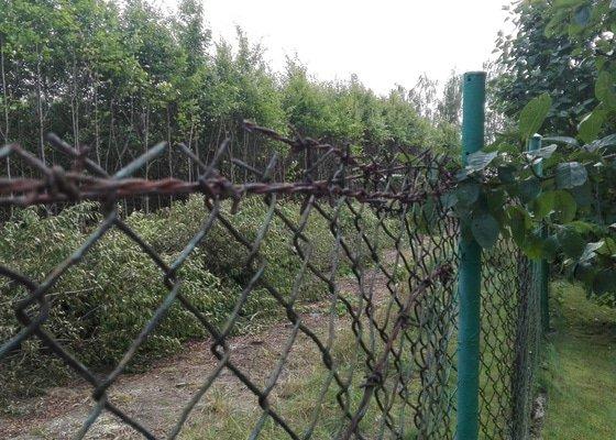 Rekonstrukce plotu