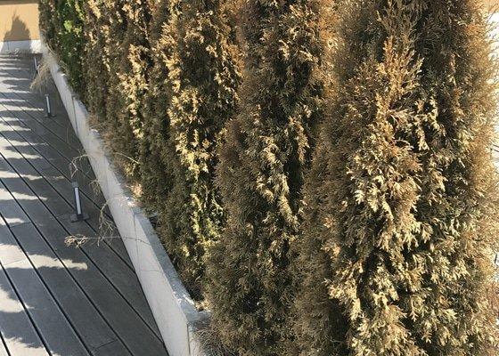 Revitalizace zahrady (terasy) plus servis zavlazovaciho systemu