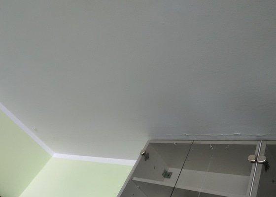 Panel - vymalování obyvacího pokoje + strop kloupelny
