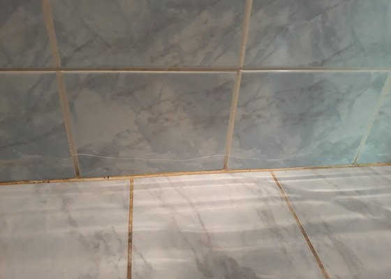 Malířské práce - vymalovaní obývák, kuch. kout, jídelní kout, chodba, wc, a komory + výměna spodní řady dlaždiček v koupelně (cca 22 ks)