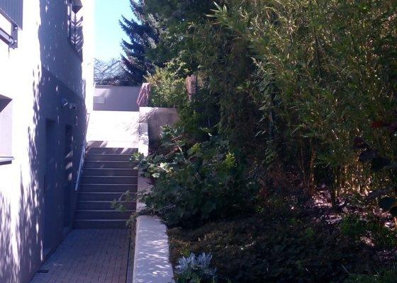 Návrh a realizace zahradní skalky na Praze 7