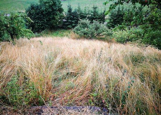 Sekání vysoké trávy ve svahu