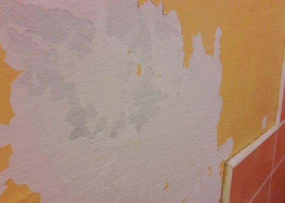 Vymalovani bytu v panelovem dome 1+1