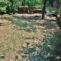 vycisteni-zahrady_IMG_20180728_124726