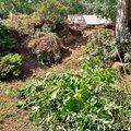 vycisteni-zahrady_IMG_20180728_103653