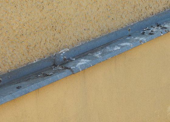 Ochrana před holuby