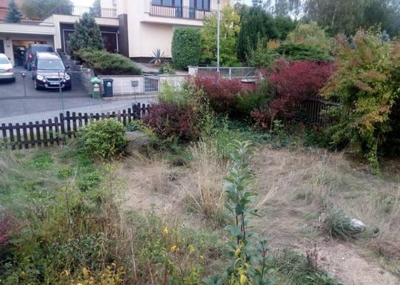 Zahrada - úprava zanedbané úpravy