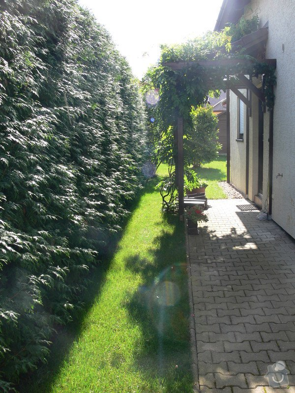 Instalace závlahového systému,udržba zahrady: P1480513