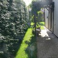 Instalace zavlahoveho systemu udrzba zahrady p1480513