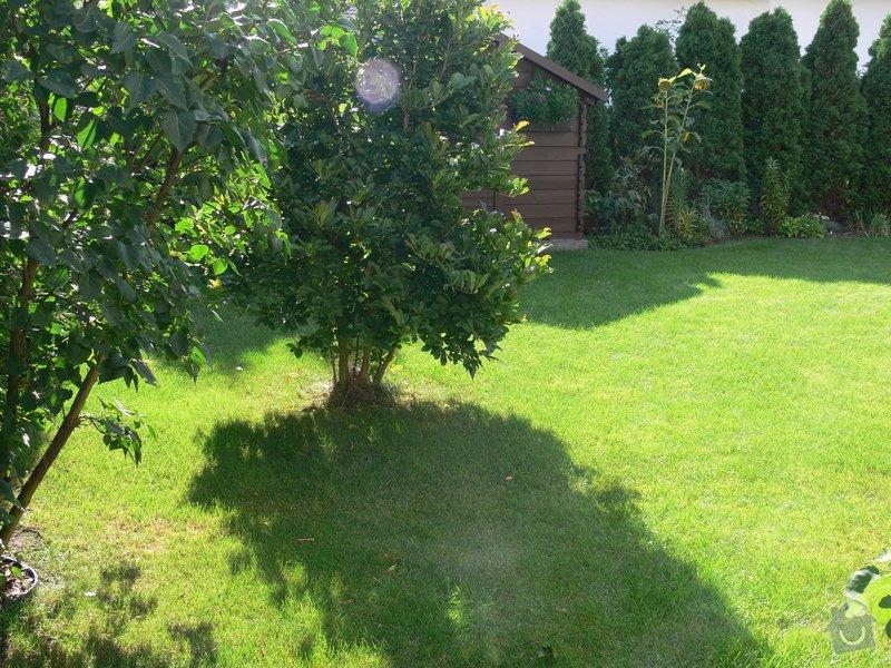 Instalace závlahového systému,udržba zahrady: P1480515