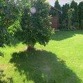 Instalace zavlahoveho systemu udrzba zahrady p1480515