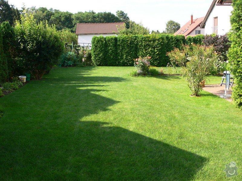 Instalace závlahového systému,udržba zahrady: P1480519