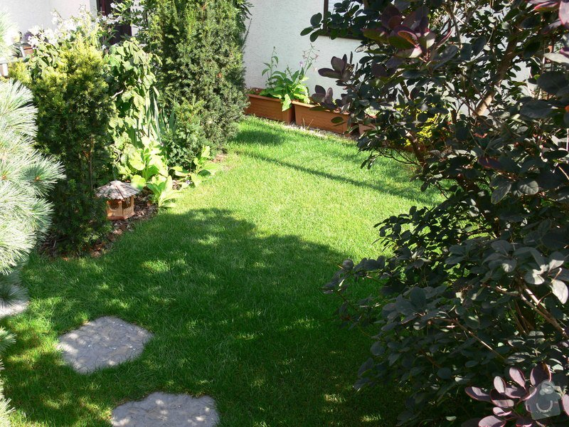 Instalace závlahového systému,udržba zahrady: P1480524