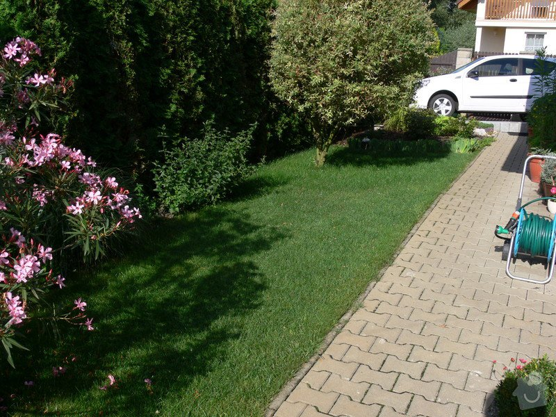 Instalace závlahového systému,udržba zahrady: P1480528