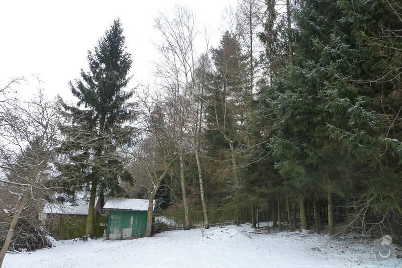 Kácení 20 stromů: P1060411