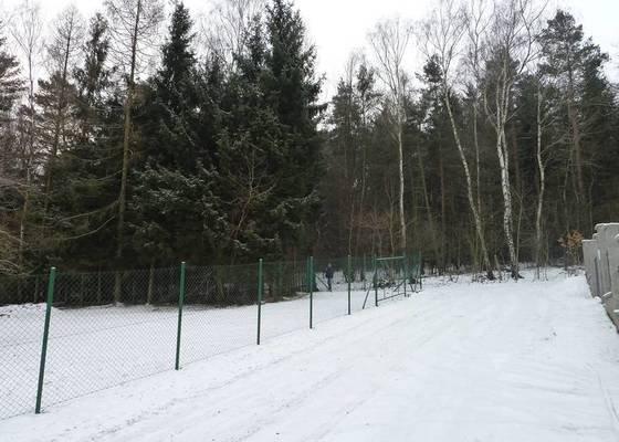 Kácení 20 stromů