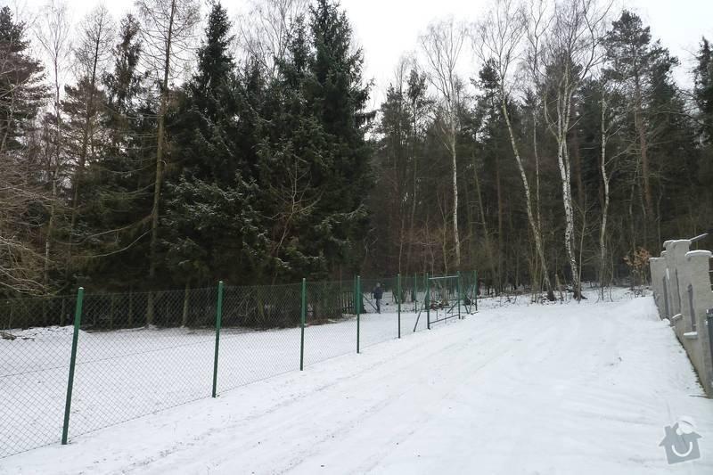 Kácení 20 stromů: P1060415
