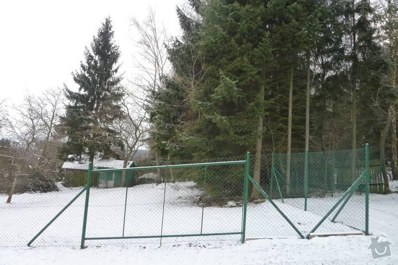 Kácení 20 stromů: P1060416