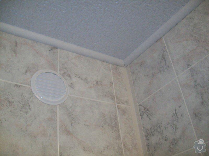 Rekonstrukce koupelny a WC v panelákovém bytě: 100_1189