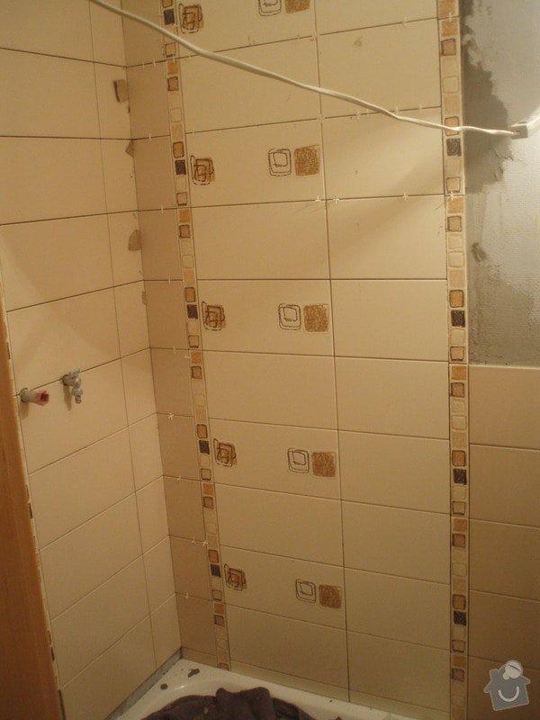 Rekonstrukci WC a koupelny: P1170135