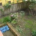Revitalizace zahrady cimg0043