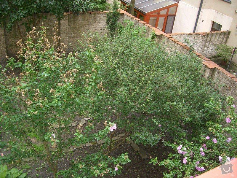 Revitalizace zahrady.: CIMG0045