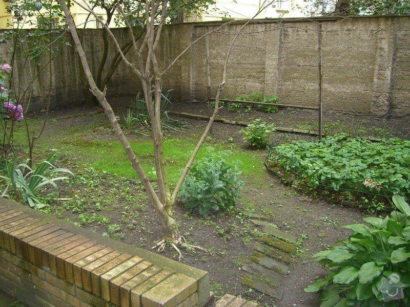 Revitalizace zahrady.: CIMG0047