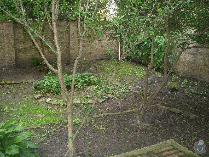 Revitalizace zahrady.: CIMG0048