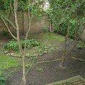 Revitalizace zahrady cimg0048