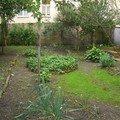 Revitalizace zahrady cimg0051