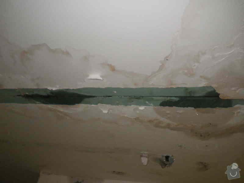 Znalecký posudek vegetační střechy nad hromadnými garážemi: IMGP6521