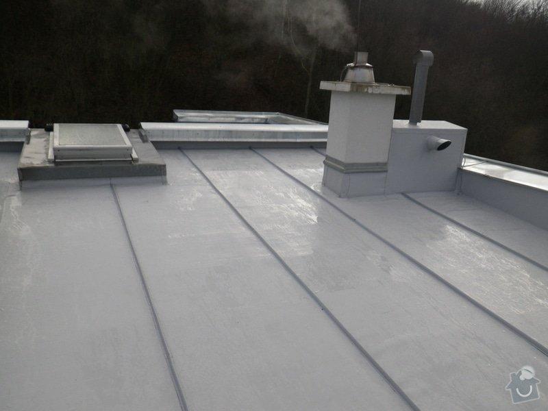 Odborné posouzení, návrh nápravných opatření a technický dozor investora při opravě střešního pláště: IMGP8800