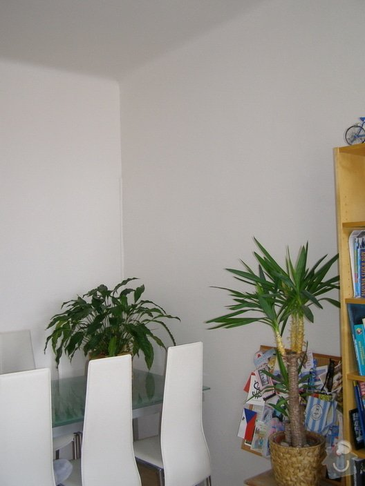 Rekonstrukce a přestavba bytu 3+1: P2180065