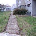 Pokladka zamkove dlazby do venkovniho chodniku cca 36 m2 pokladka zamkove dlazby vcetne obrub