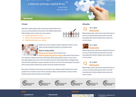 Tvorba webové stránky společnosti Tender systems s.r.o.