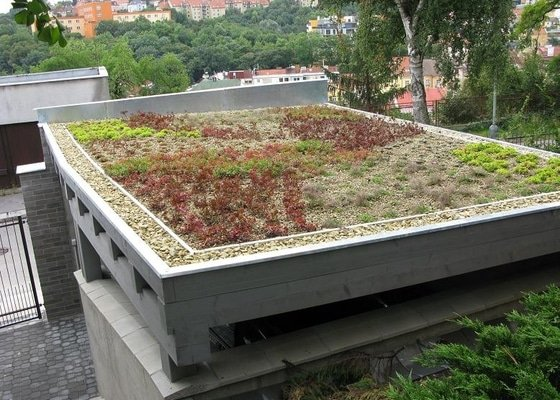 Zelená vegetační střecha