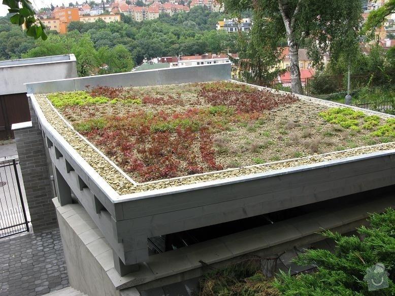 Zelená vegetační střecha: 115-gall