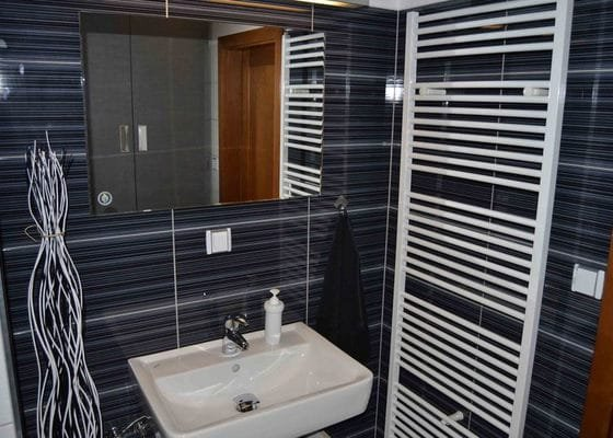 Rekonstrukce koupelna a Wc
