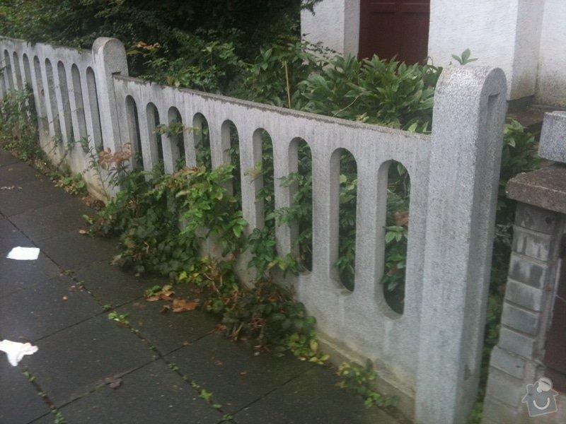 Replika plotu - teraso: IMG_0181