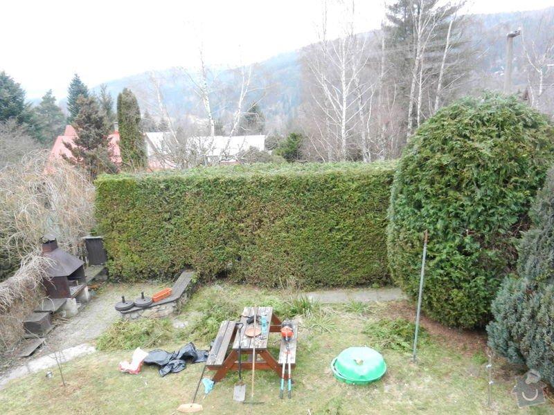 Zahradnicke prace - rez thuji: DSCN3744