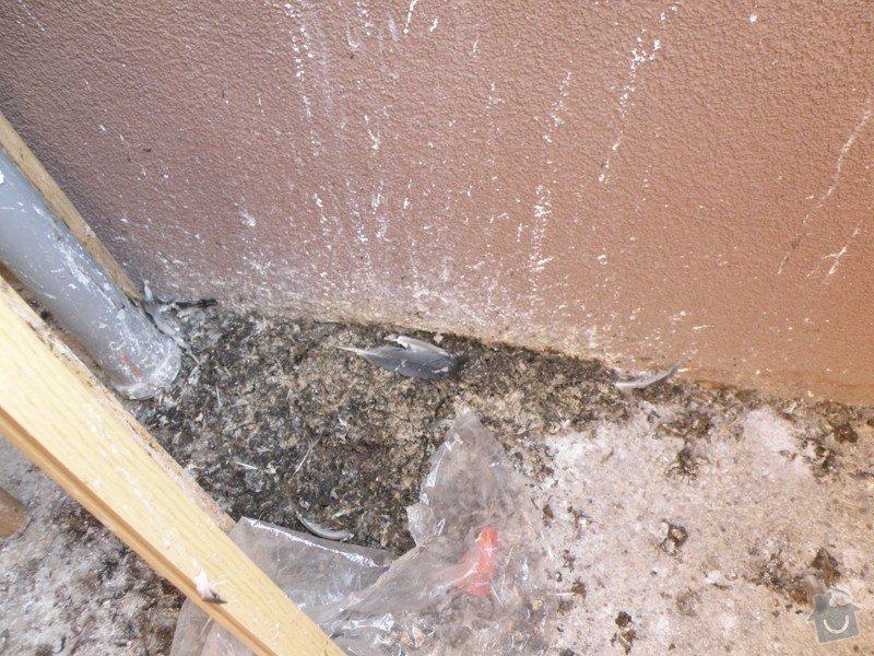 Vyčištění balkónů, dvora a den světlíků + lakýrnické práce malého rozsahu.: P3240004