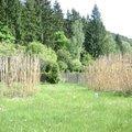Zahradni prace dsc02962
