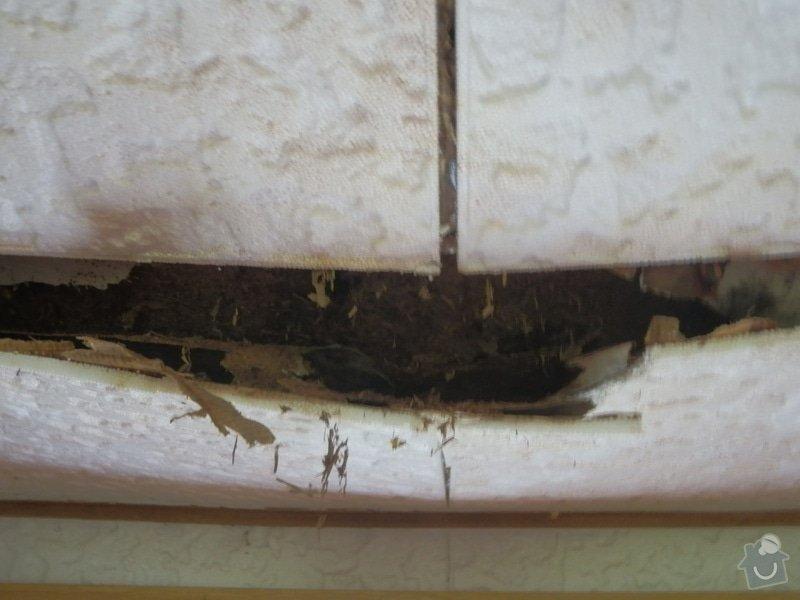 Rekonstrukce střechy stavební buňky: P5100003