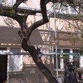 Fasada a zatepleni imag0043