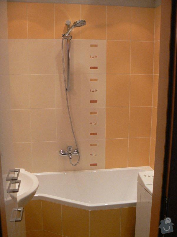 Rekonstrukce bytového jádra v Žabovřeskách: P1050214