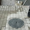 Zamkova dlazba palysady plotove steny kyje upravy pov 0002 20130528230637