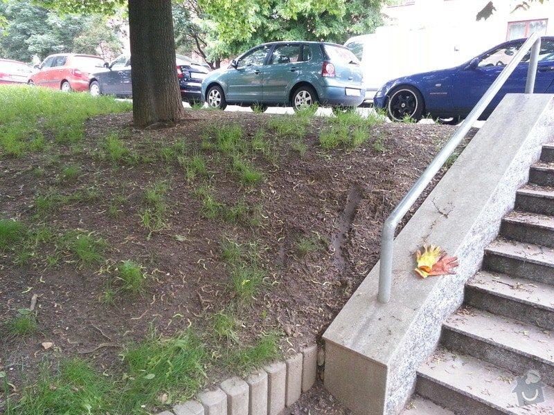 Úprava terénu u domovního vchodu + kontrola stromů: 20130606_194204_kopie
